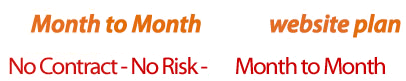 Month to Momth Website Plan    No Contact - No Risk - Month to Month